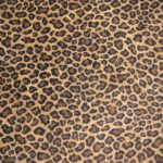 cheetah print rugs with interesting accent that bring joyful and pleasant outlook for home interior