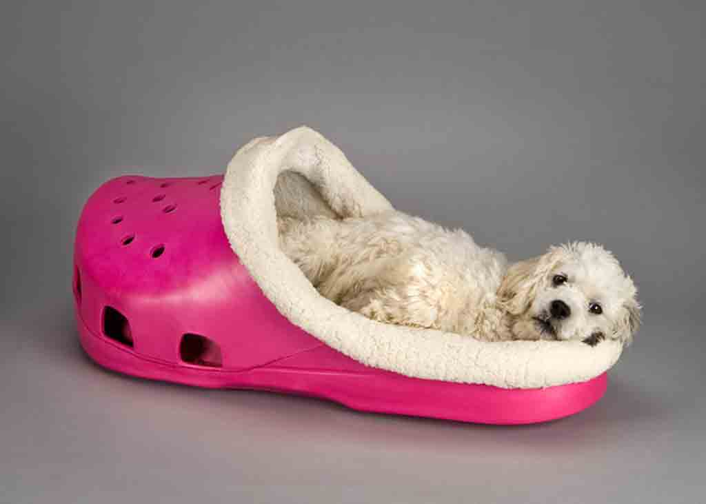 cute and stylish dog beds in cute shape for your small dog