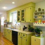 fresh lemonade color paint for kitchen idea with lemonade wooden cabinet and wall racks and potted plant and wooden floor
