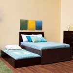 gorgeous black pop up trundle bed frame idea with soft blue bedding and wall palette and wooden floor and green area rug