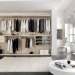 luxurious dress up storage idea with wall wardrobe racks and sofa and pouf and white rug and open plan