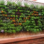 Modern Way Of Vertical Gardening Of Home And Garden Catalog On Red Brick Wall Accent With Lattice Decoration