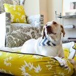 stylish dog beds in yellow with playful pattern for big dogs