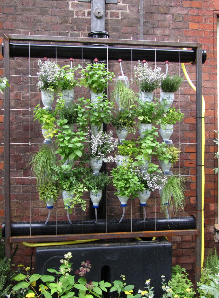 Best vertical indoor plant from home and garden catalog for Best home catalogs