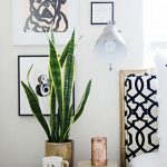 white interior design with wall palette and black nightstand and potted plant and book and cup and unique indoor plant
