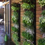 Wonderful Green Vertical Home And Garden Catalog Idea With Wooden Wall And Wooden Flooring And Black Stand