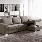 apartment size sleeper sofa with storage place and fur rug