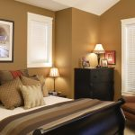 Brown Color For Warm Sense Of Interior Paint Color 2014 For Bedroom With Dark Bed Cabinet Chair And White Shades