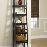 Cool Ladder Leaning Bookshelf In White Room