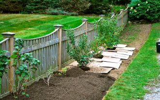 Landscaping Ideas For Backyard Fencing With Planting Project