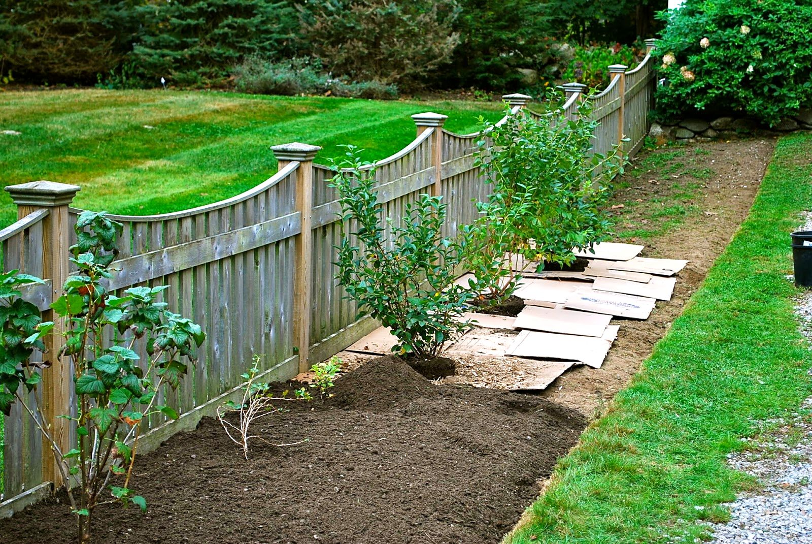Backyard Fencing Ideas HomesFeed