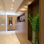 adorable elegant brown narrow corridor design with recessed wall storage with indoor plant and ceiling lamps and creamy flooring idea