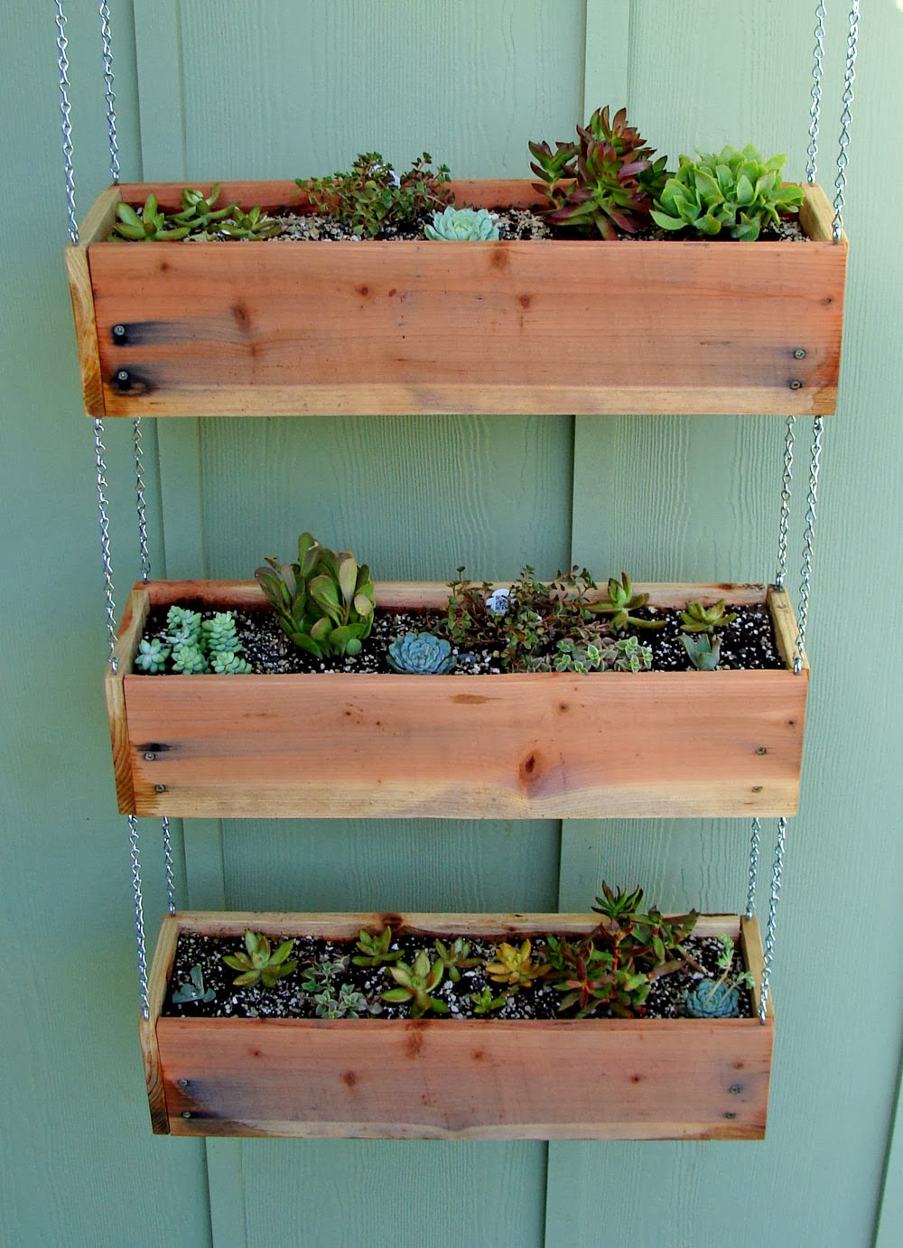 succulent planter to make awesome indoor garden homesfeed. Black Bedroom Furniture Sets. Home Design Ideas