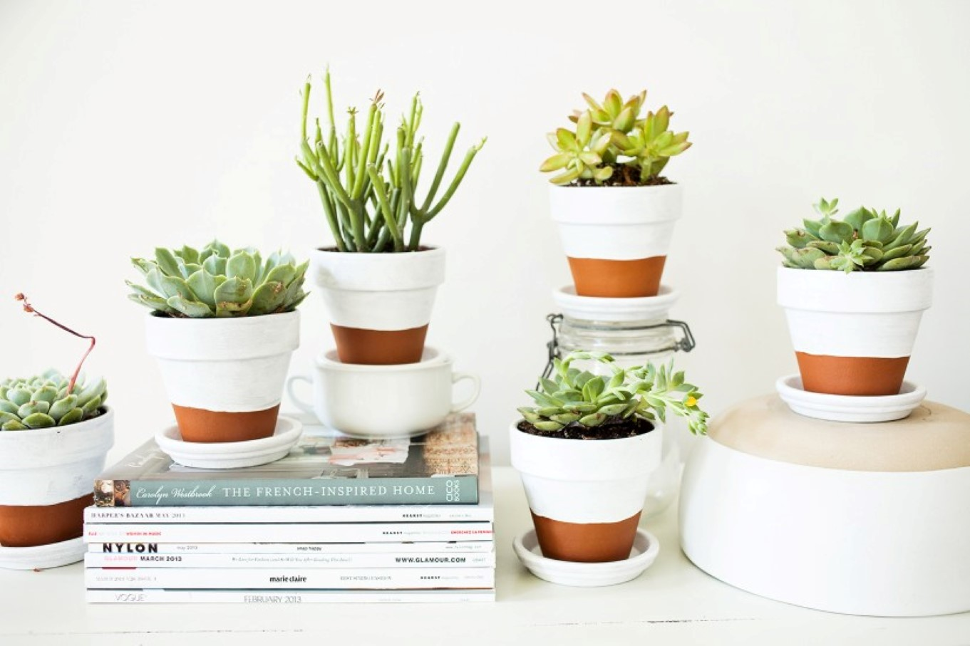 Succulent Planter To Make Awesome Indoor Garden Homesfeed