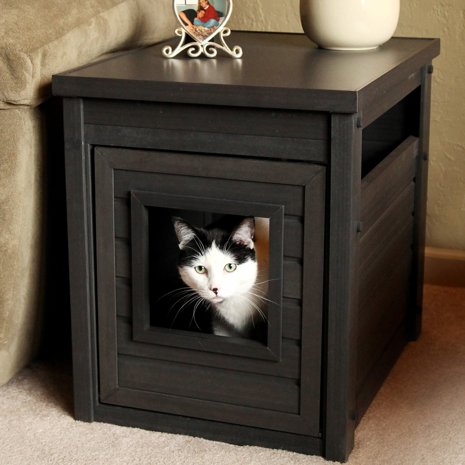 Cat Litter Box Ideas Decorated Inside Modern Cabinets With Small Entry And  Pretty Frame And Vase