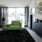 comfortable and minimalist living room idea with black area rug and green couch design and large glass window and black cabinet and wall racks