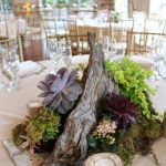 Great Succulent Planter Idea With Log Decortaion And Green Shrub And Ground And Stone For Indoor Decoration
