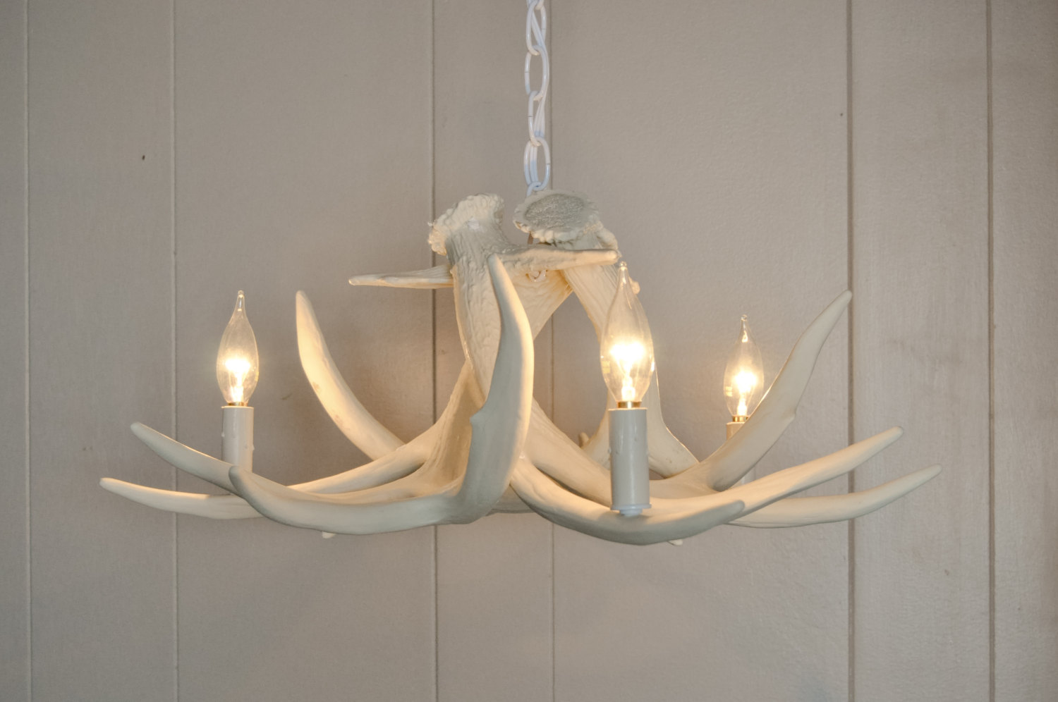 White antler chandelier displaying unique and rustic details in your the picture white antler chandelier hung on the ceiling with chain mounting kit plus 3 bulbs aloadofball Gallery
