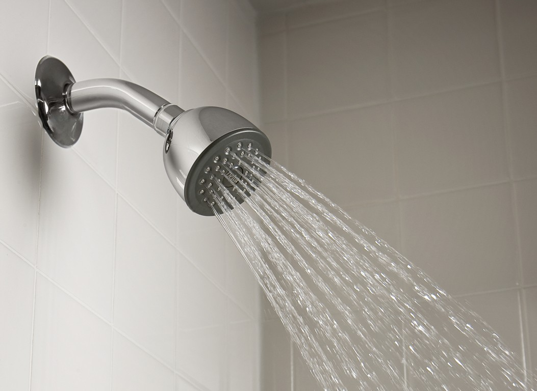 The Types Of Shower Heads You Probably Didn T Know Homesfeed