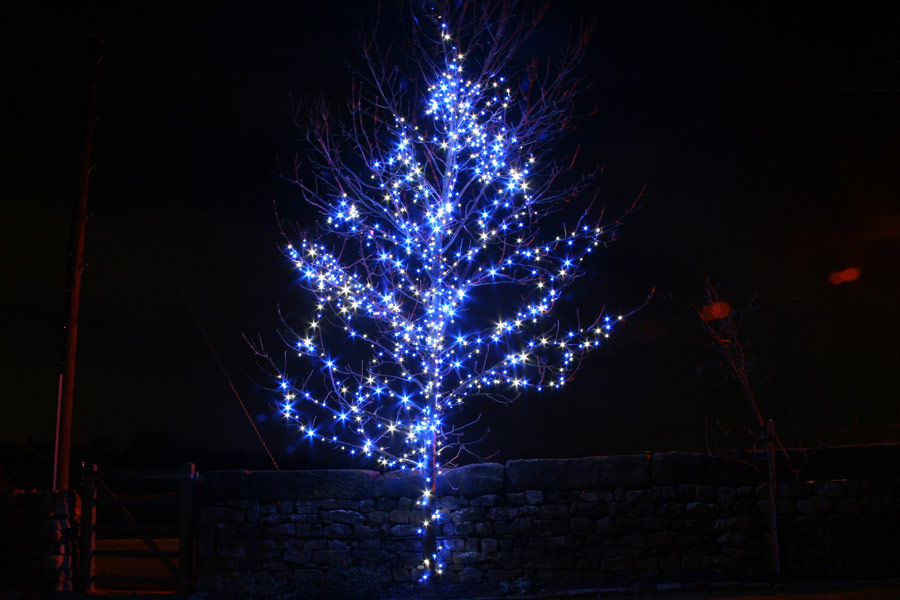 Top 28+ - Blue And White Christmas Tree Lights - white ...