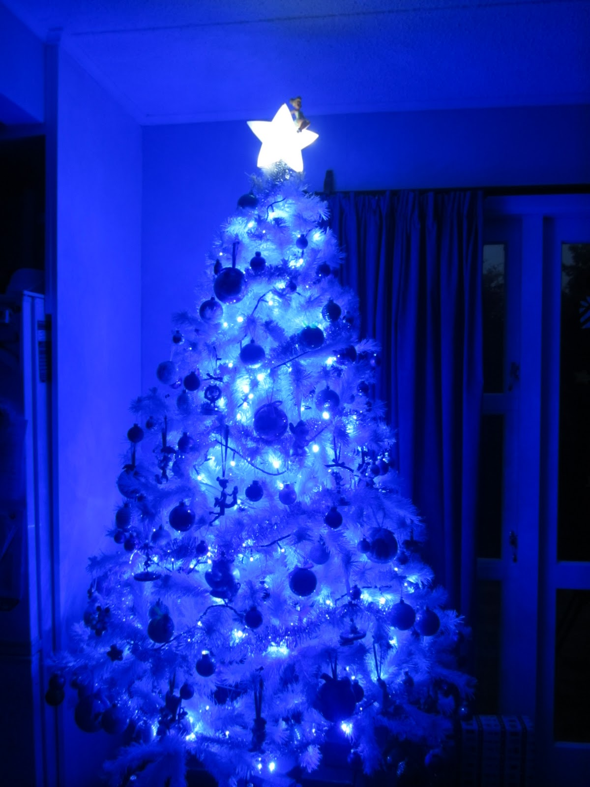 Blue and white christmas lights homesfeed blue and white christmas lights on tree with star aloadofball Image collections