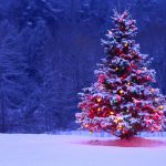 Great Decoration Of Blue And White Christmas Lights Tree