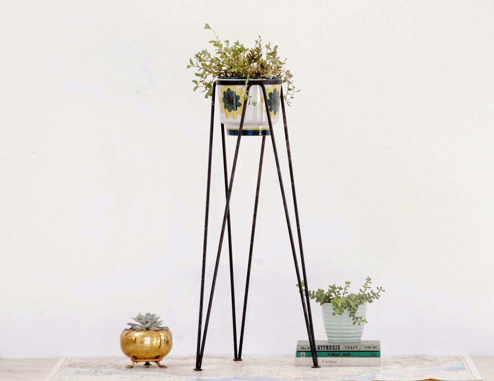 Metal Tall Stand Plant Idea With Three Hair Pin Leg Model