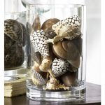 Sea shells as transparent glass vase filler