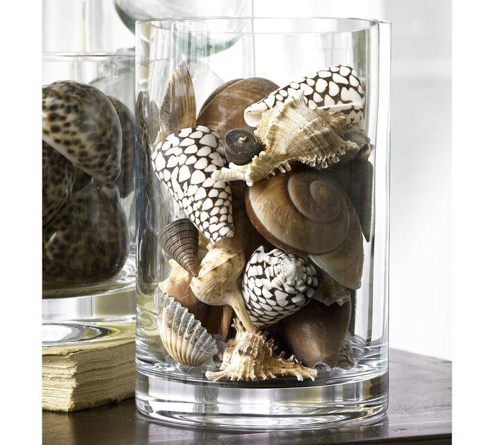 Seashells Sea Glass Vase Filler