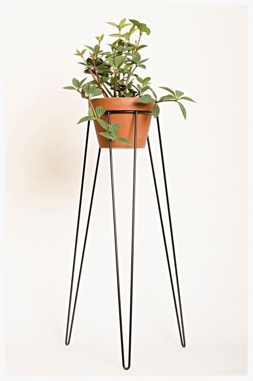 Tall plant stands decorative and functional tool for indoor and outdoor gardens homesfeed - Steel pot plant stands ...