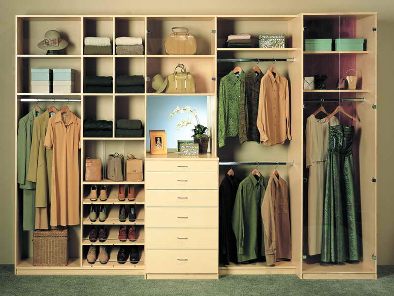 Home Wood Closet ~ Closet organizer walmart the variants homesfeed