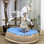 Soft And Cool Stylish Dog Beds In Blue And Brown Color