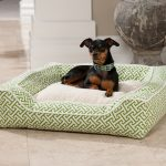 Soft Green Pattern Of Stylish Dog Beds