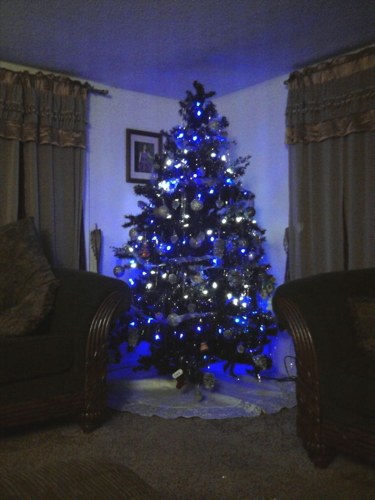 Blue And White Christmas Lights | HomesFeed