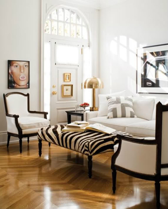 Complete Your Safari Themed Home Decor With Animal Print