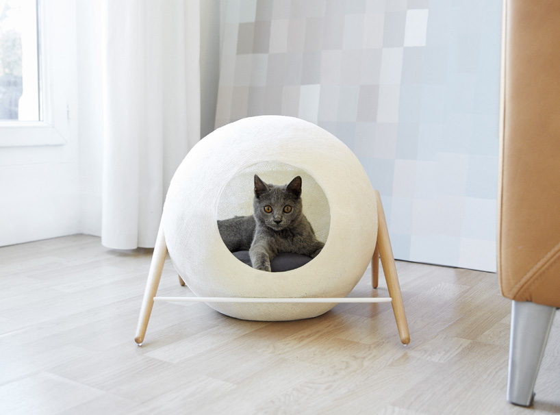 Spoil your lovely cats with contemporary cat furniture - Contemporary cat furniture ideas ...