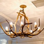 gorgeous tree root  wooden light fixture design idea with octopus style beneath the ceiling