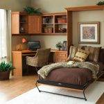 natural themed bedroom design with wooden storage and brown murphy bed kit lowes with white area rug and wooden floor and indoor plant