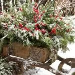 Winter Wonderland Christmas Garden Decoration With Vintage Style From Old Wooden Wheelbarrow Or Wooden Trailer Filled With Branches And Red Berries