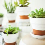 Concrete pots in white and brown colors