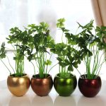 Copper pots for interior in various colors