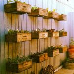 Creative floating interior gardens with ex wine crates as the planter boxes
