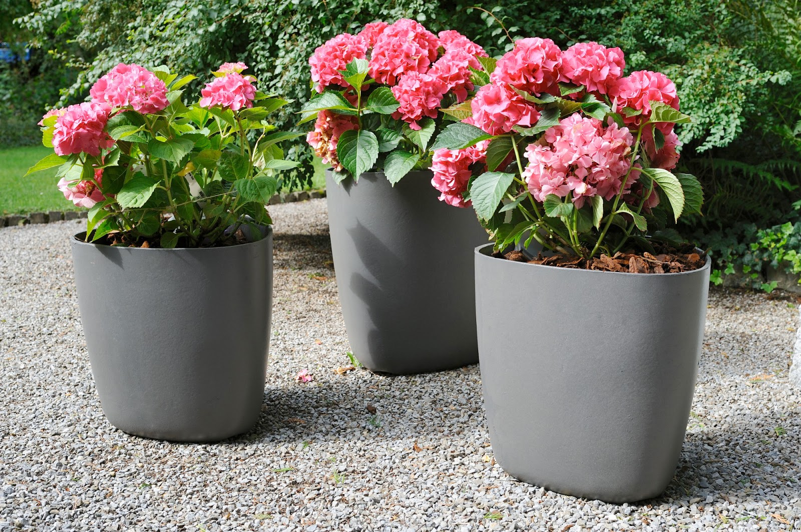 Modern Garden Large Planters For Outdoors