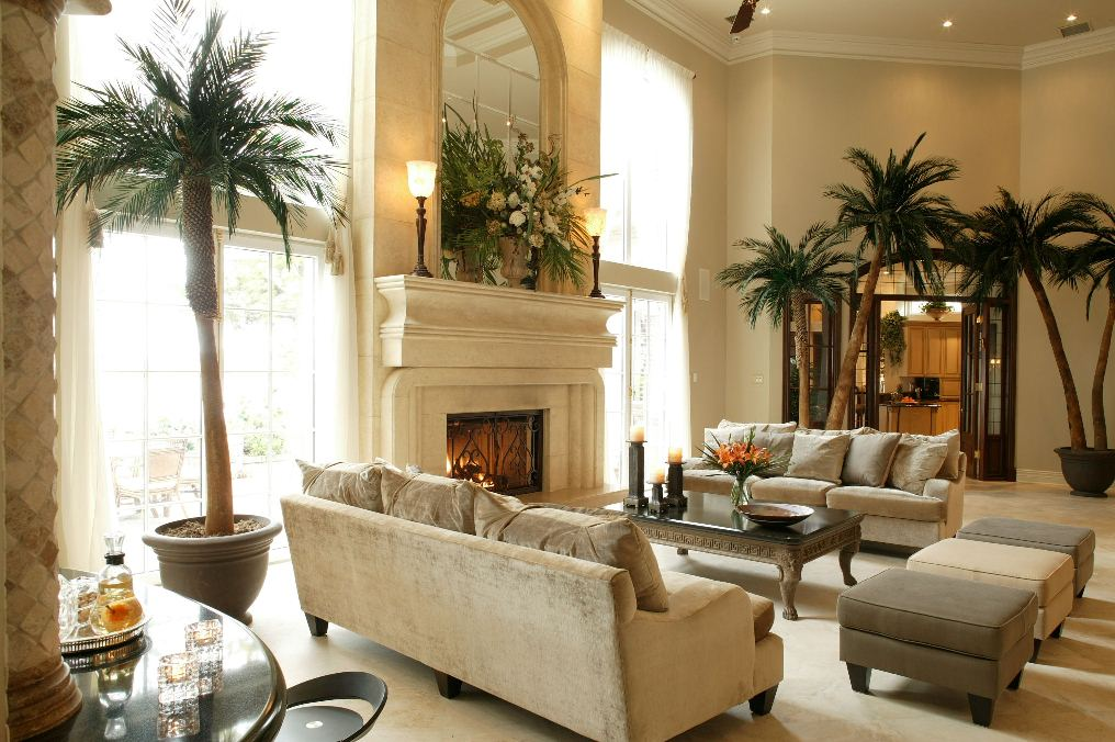 Natural And Elegant Living Room With Big Plants White Fireplace And Sofas Plus Ottoman For Home