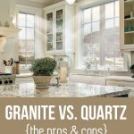 Quartzite Countertops Pros and Cons For Kitchen Interior Design
