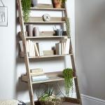 RUstic Ladder Shelving Unit With Fresh Plants Decor