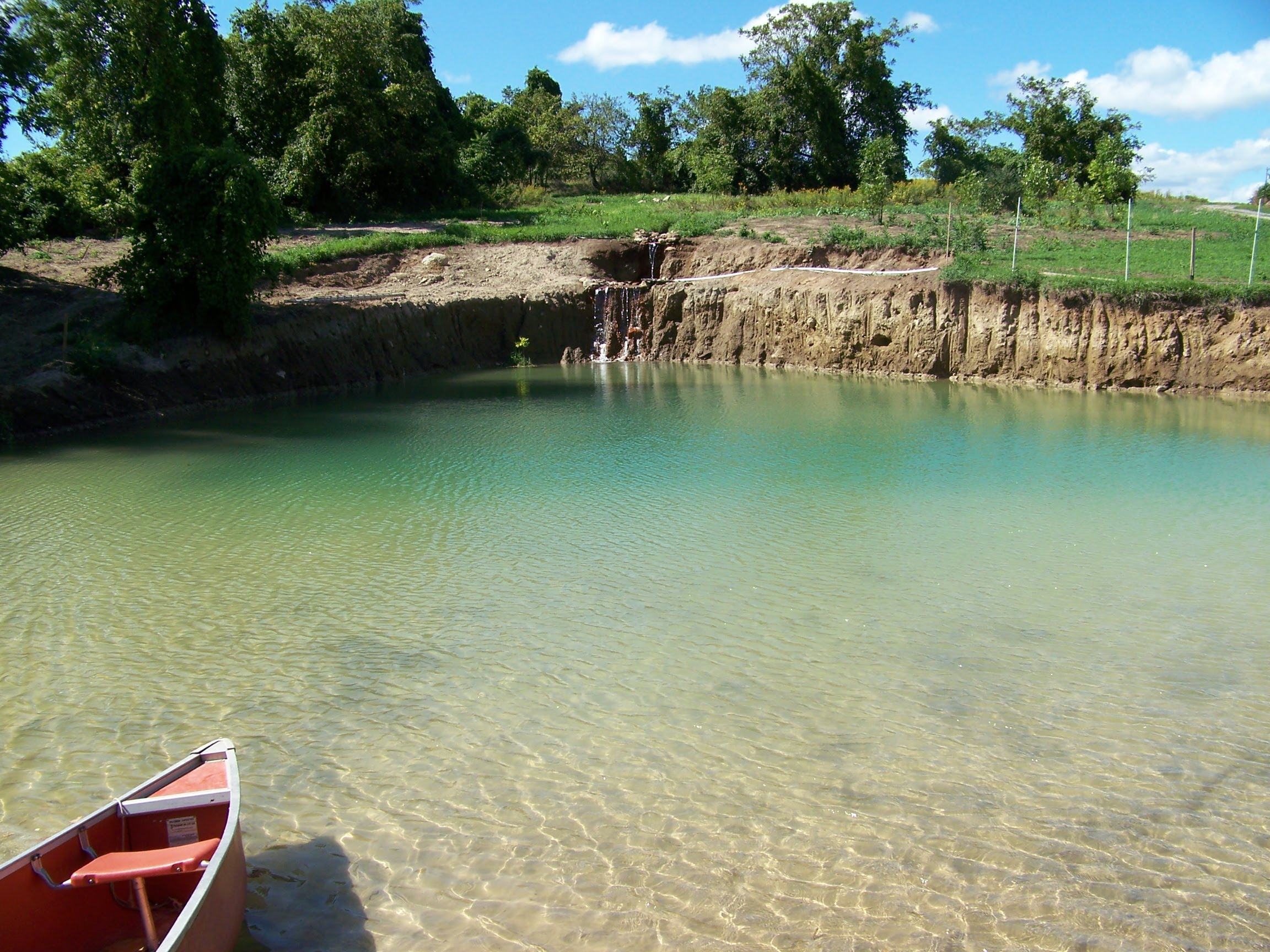 Tips to build your diy natural swimming pools homesfeed for Create a pool