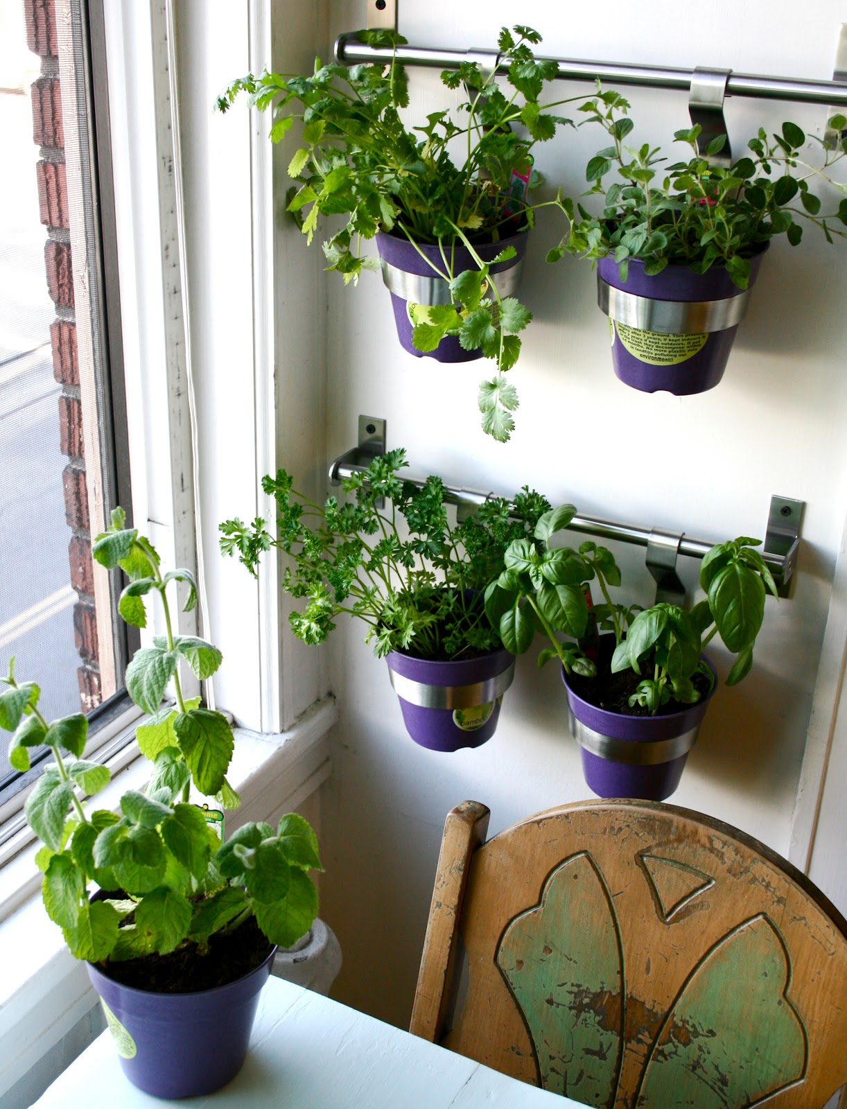 best pots for herbs