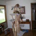 Indoor Tall Cat Trees With Wooden Furniture