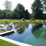 Traditional Coping Of Natural Pool